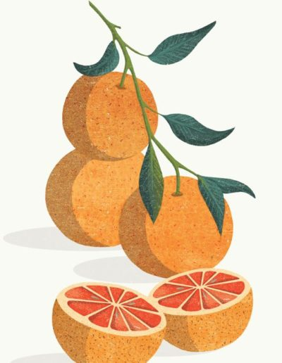 4-botanical-Oranges-800h