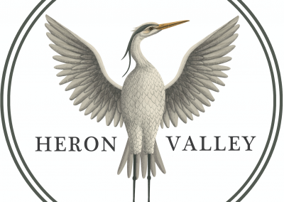 Heron Valley illustration by Lucy Rose